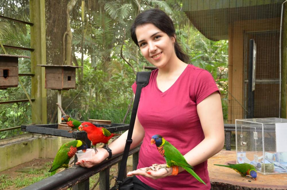 Farnaz feeding the birds